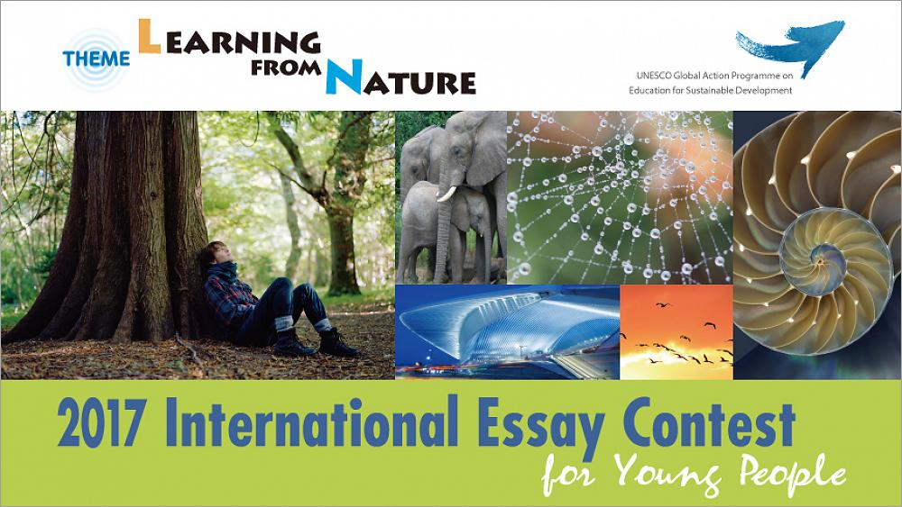 nature and wildlife essay