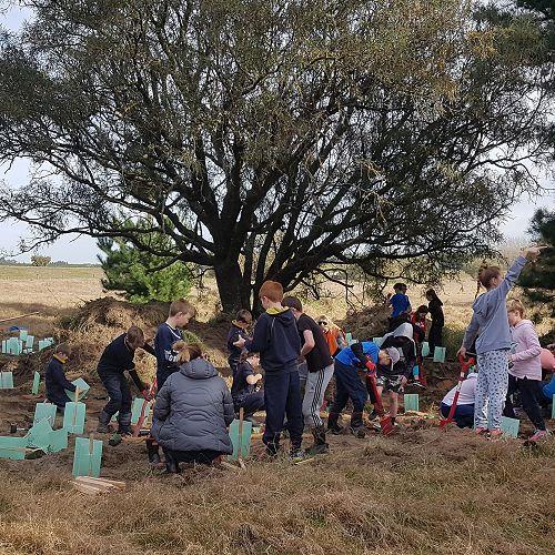 Kowhai Sanctuary Trip - Term 3 2018