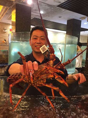 Shanghai restaurateur receiving hisweekly delivery of Wild Legend tagged lobsters.