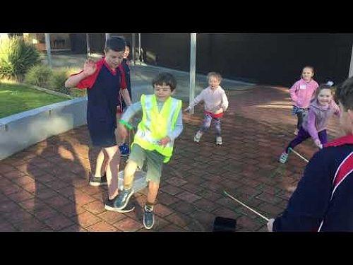 Video: IMG 4144