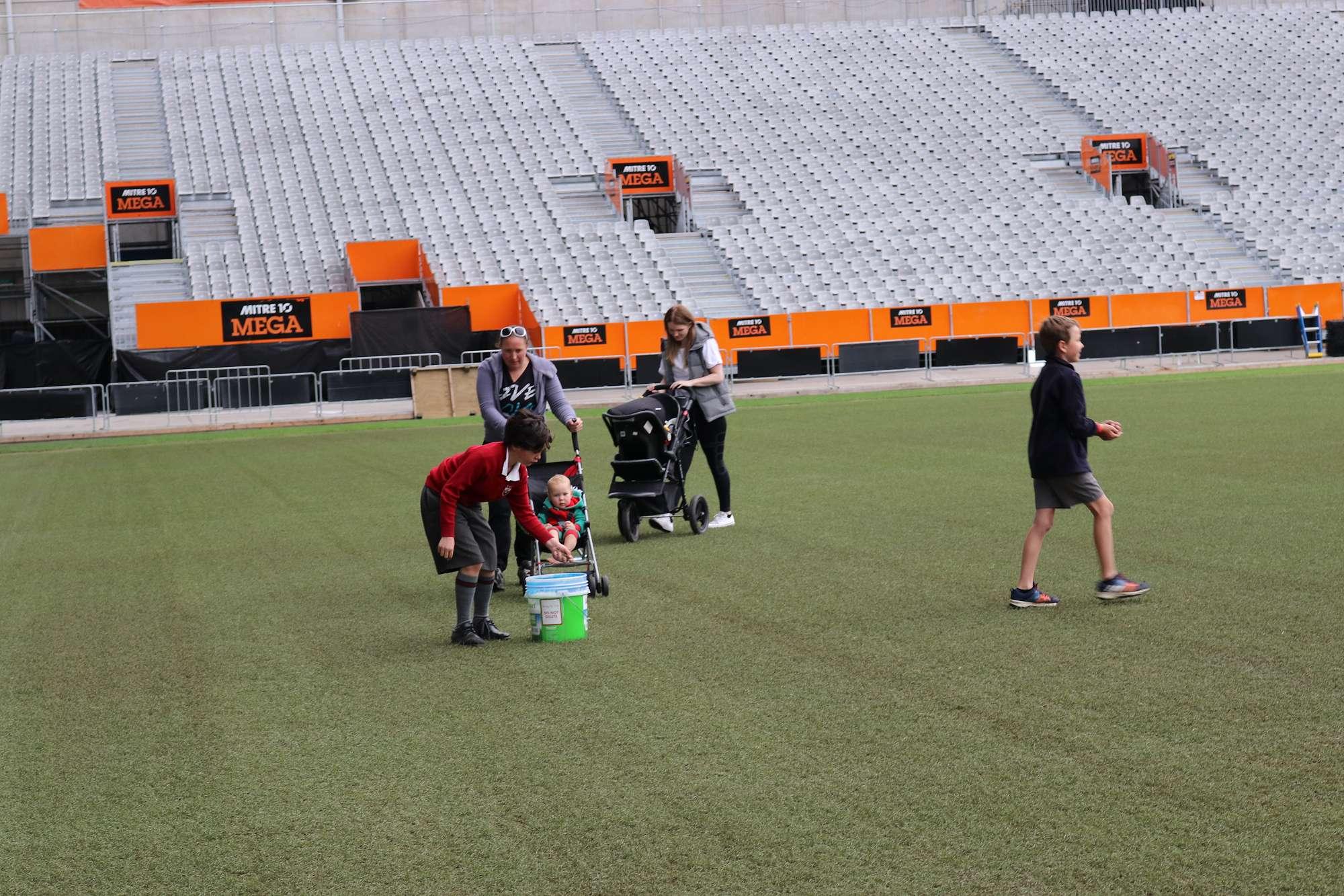 Forsyth Barr Stadium turf renovation