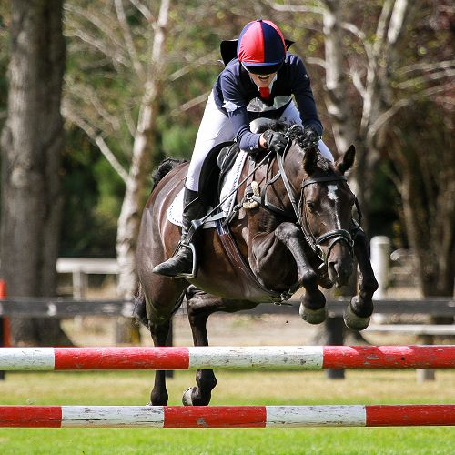 Canterbury Inter-schools Show Jumping Competition