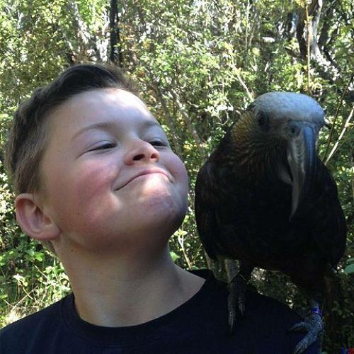 CHUFFED !  Tom Fowler & Orokonui Ecosanctuary kaka