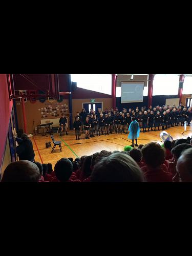 House choirs - Konini