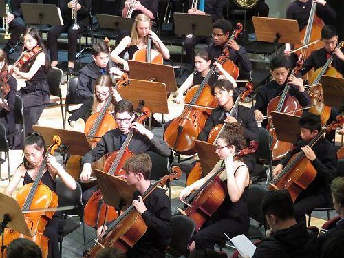 NZSSSO 2019 Cello Section