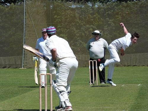 Willows Cricket