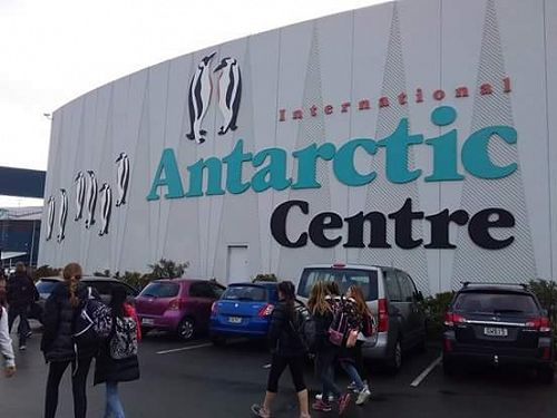 Year 8 students visit the Antarctic Centre
