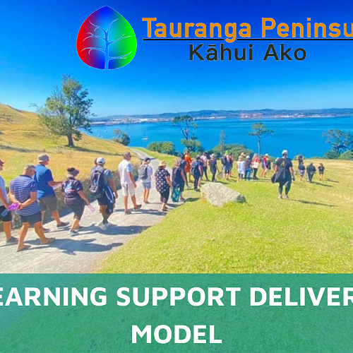 Kāhui Ako - Learning Support Delivery Model