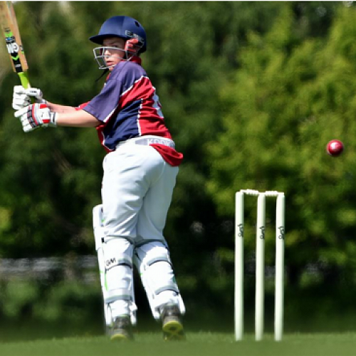 Tournament week cricket