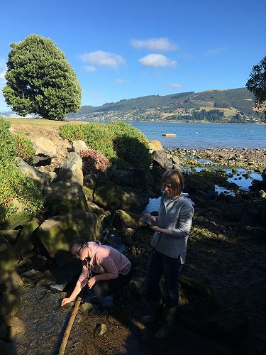 Lara Seaton and Abby Bowmar measure the oxygen concentration of the MacAndrew Bay storm drain.