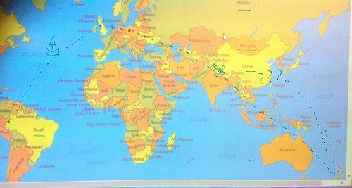 Paddington's journey from Peru to NZ