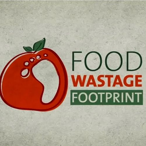 Video: Food wastage footprint