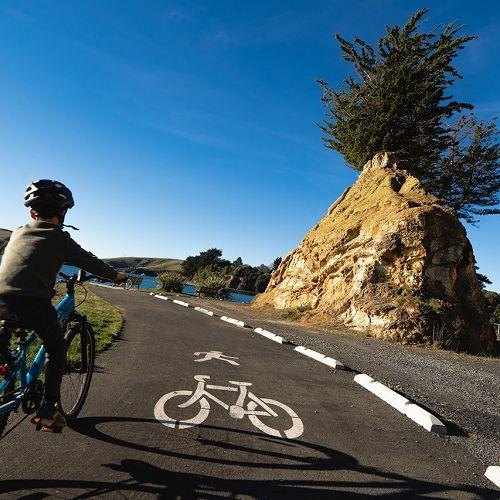 Otago Harbour cycleway at Pineapple Rock close to Portobello.