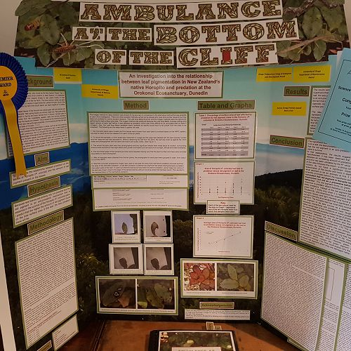 Ollie Meikle Science Fair Senior 2018 Best in Fair
