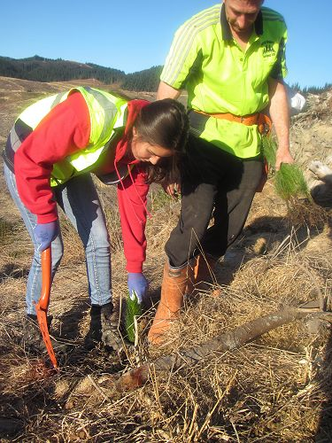 Shiloh Mould takes her turn at tree planting