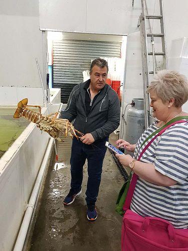John Havosholds a lobster