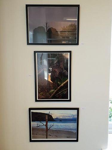 IB Art Exhibition - James Burchell