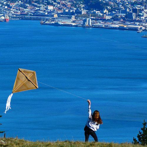 Flying a penguin kite at Camp Estate 2016 Wild Dunedin Festival