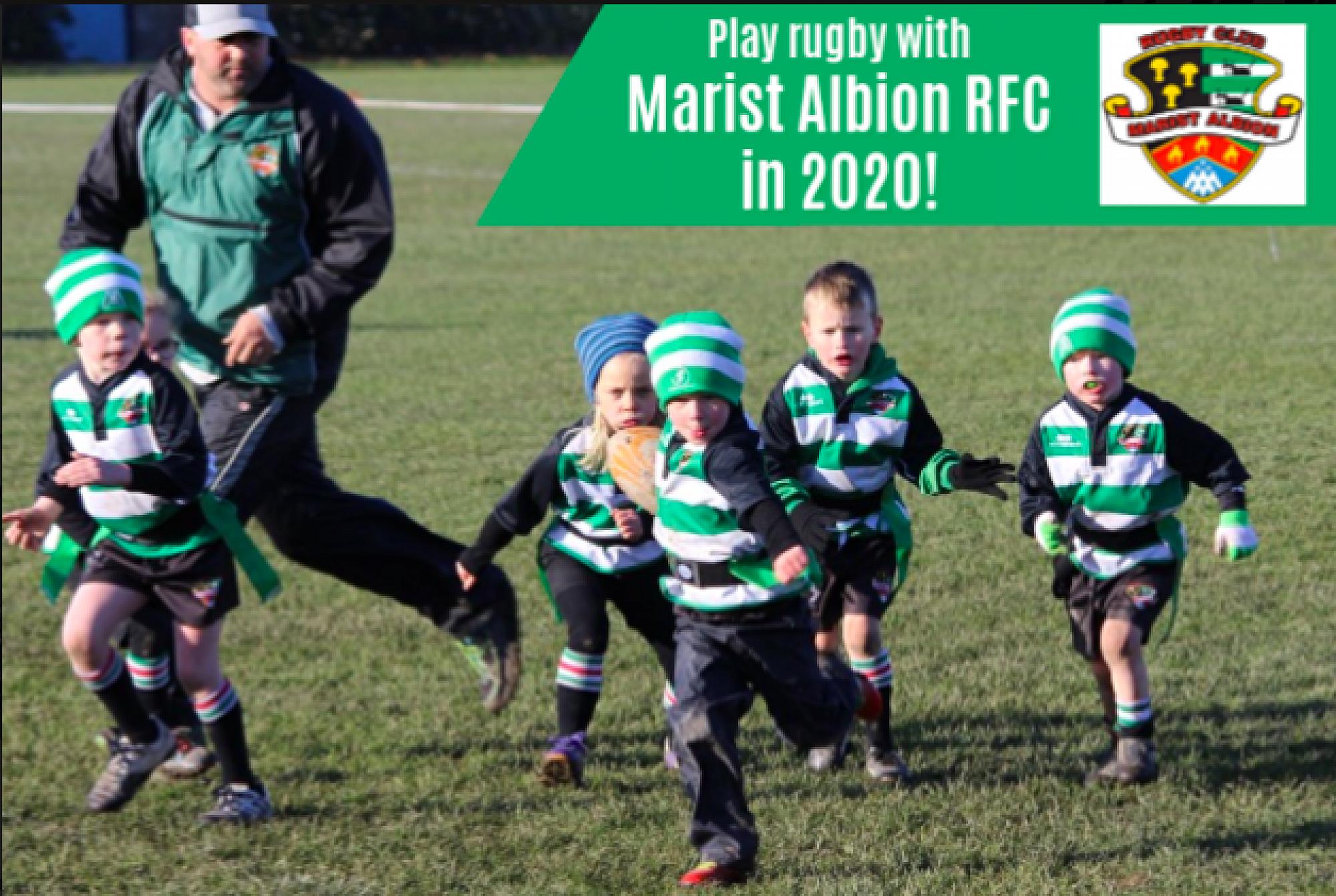Marist Albion Rfc Junior Rugby