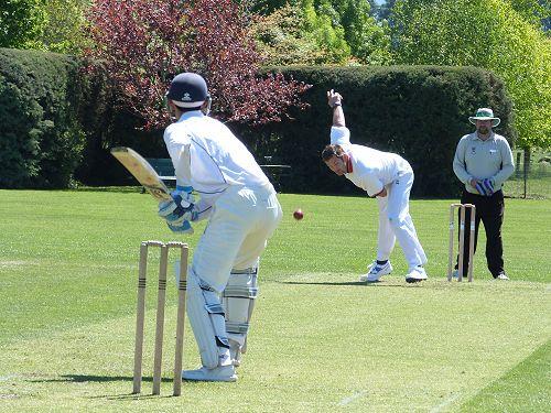 Willows Cricket