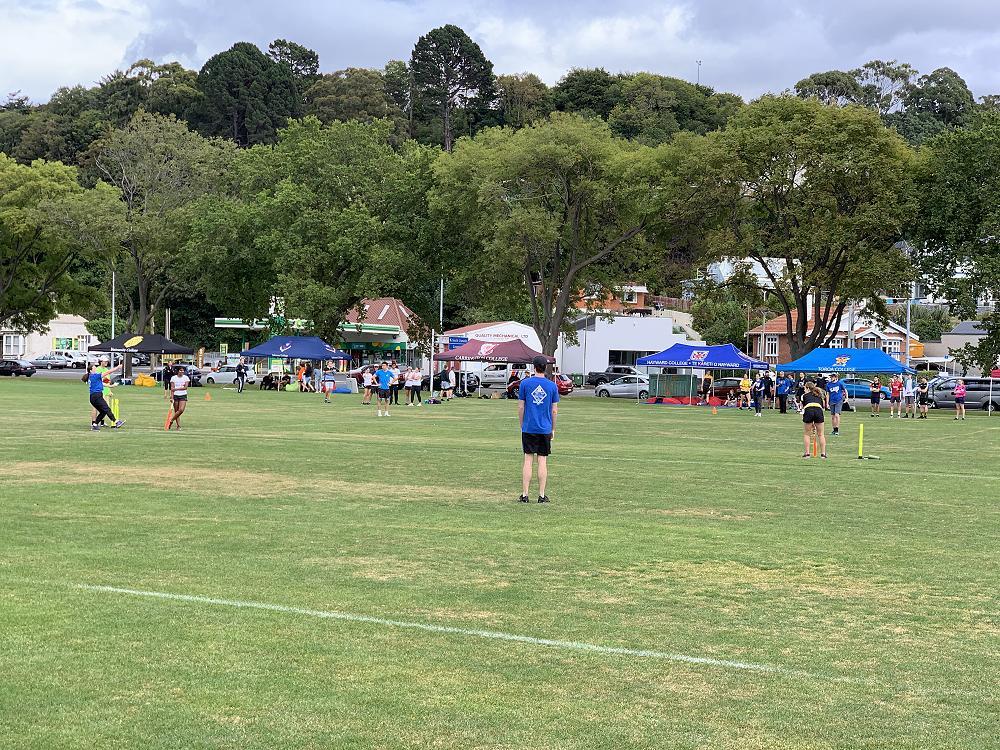 Cricket Festival, 7/3/21