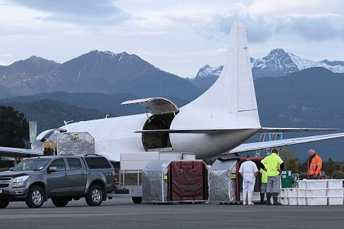 When the hold is full, the Air Chathams aircraft will lift off and fly to Auckland.