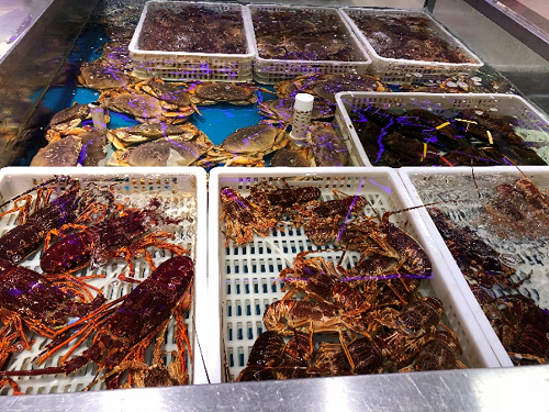 There's an amazing range of choice for consumers shopping in a high end supermarket, even in the small store where this photograph was taken. Our lobster, shown front-left, is always the most expensive. We need consumers to know why it's the best.