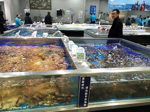 Joe Zhong surveys a Hema tank of king crabs, available<br /> from Canada, Russia and Korea.