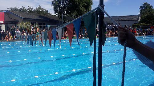 Swimming Sports 2019