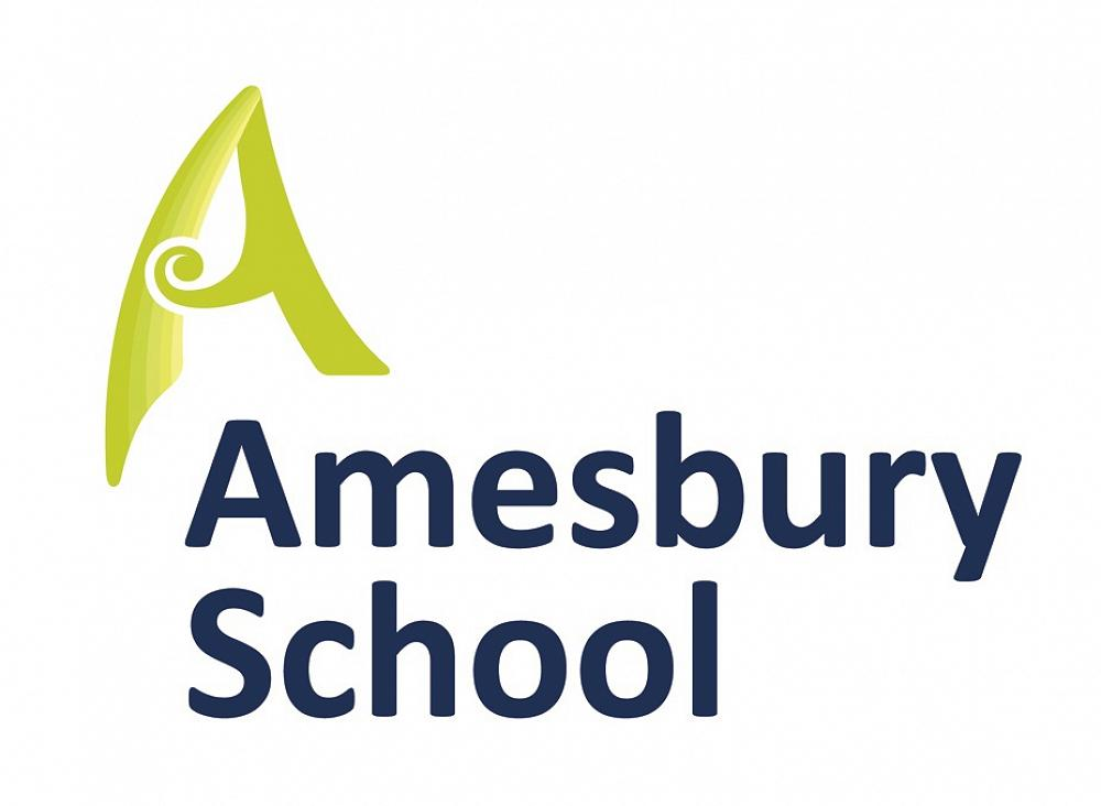 ICAS Examination entries are now open for 2019  - Amesbury