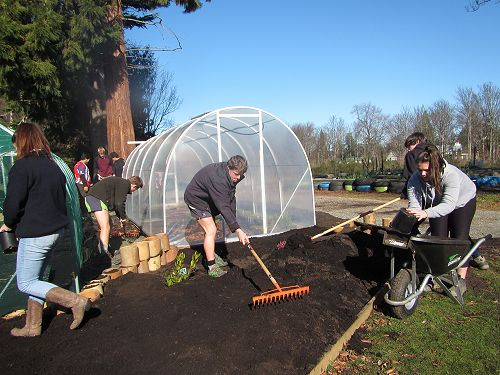 All hands on deck in the garden