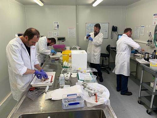 IMAS testing programme for heavy metals in lobster.