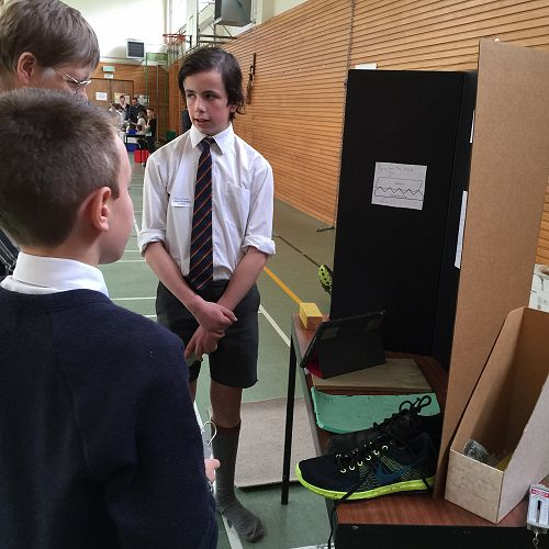 Matthew and Mason present their display.
