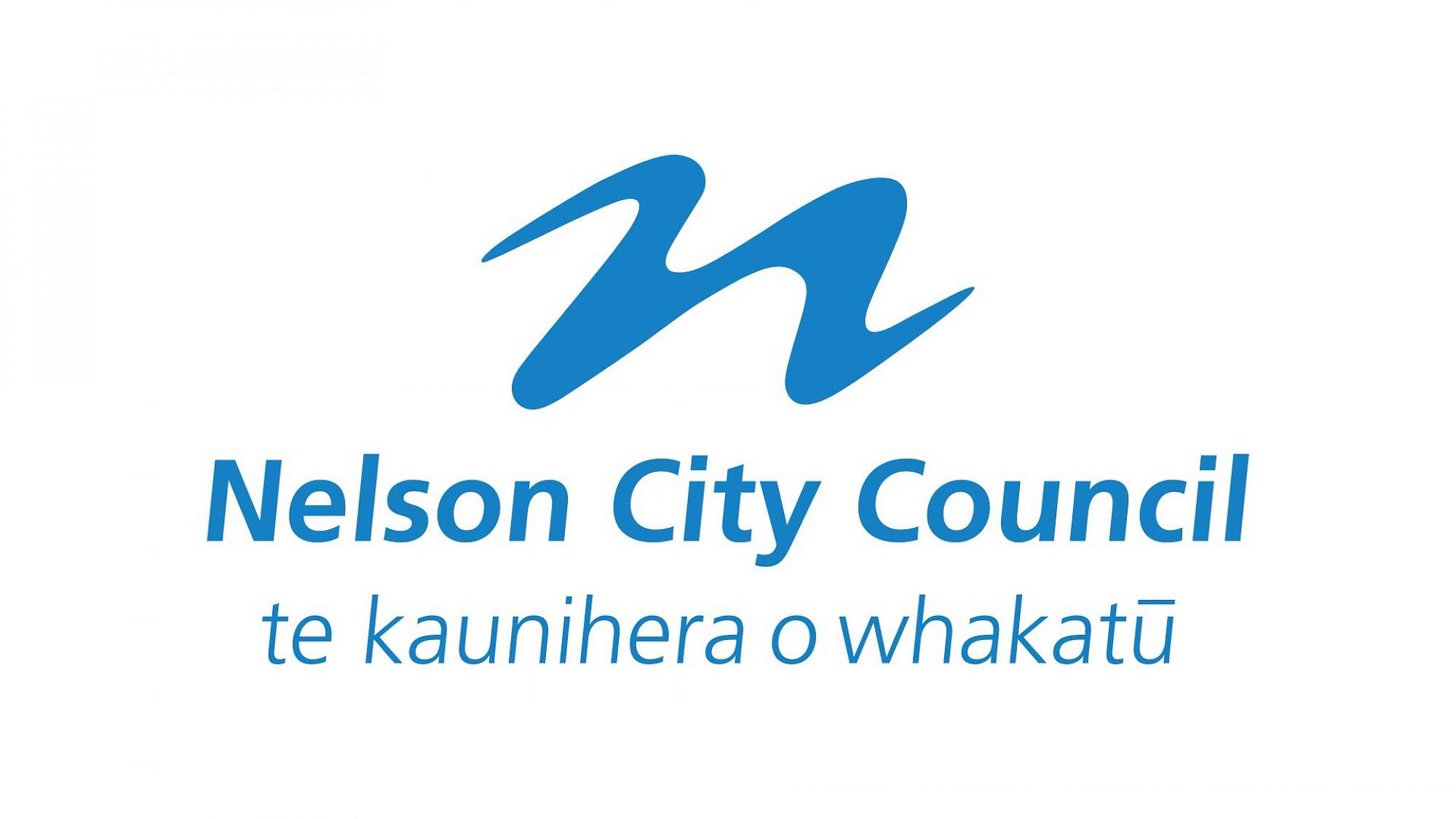 Image result for nelson city council