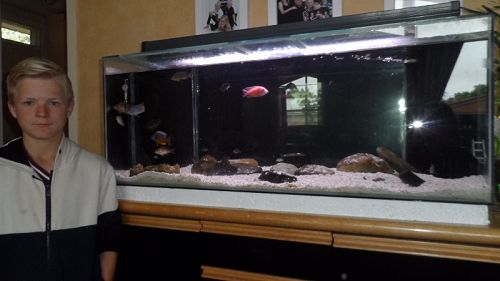 Calib from Room 2 helped set upAfrican Cichlid tan