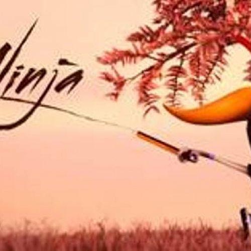 Study Ninja