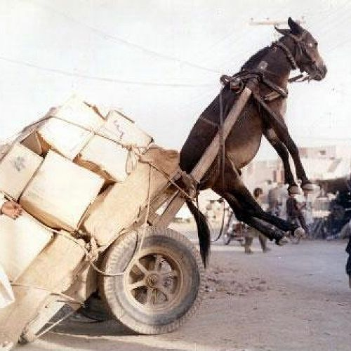 Feeling Overloaded?