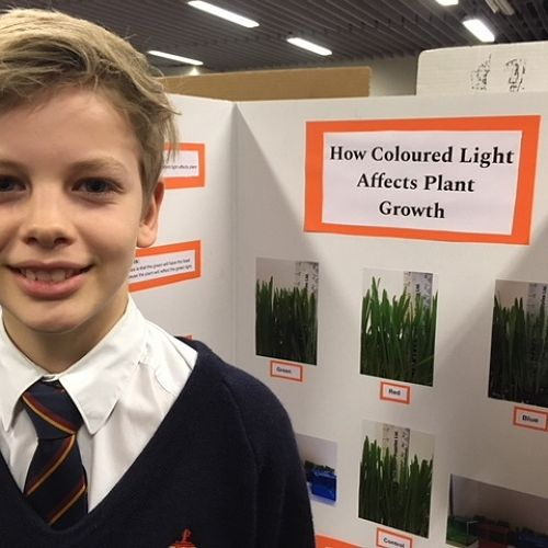 Thomas Rasmussen - Effect of Coloured Light on Plant Growth
