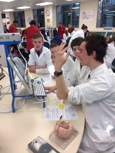 Stimulating the motor neutrons - a shocking experi