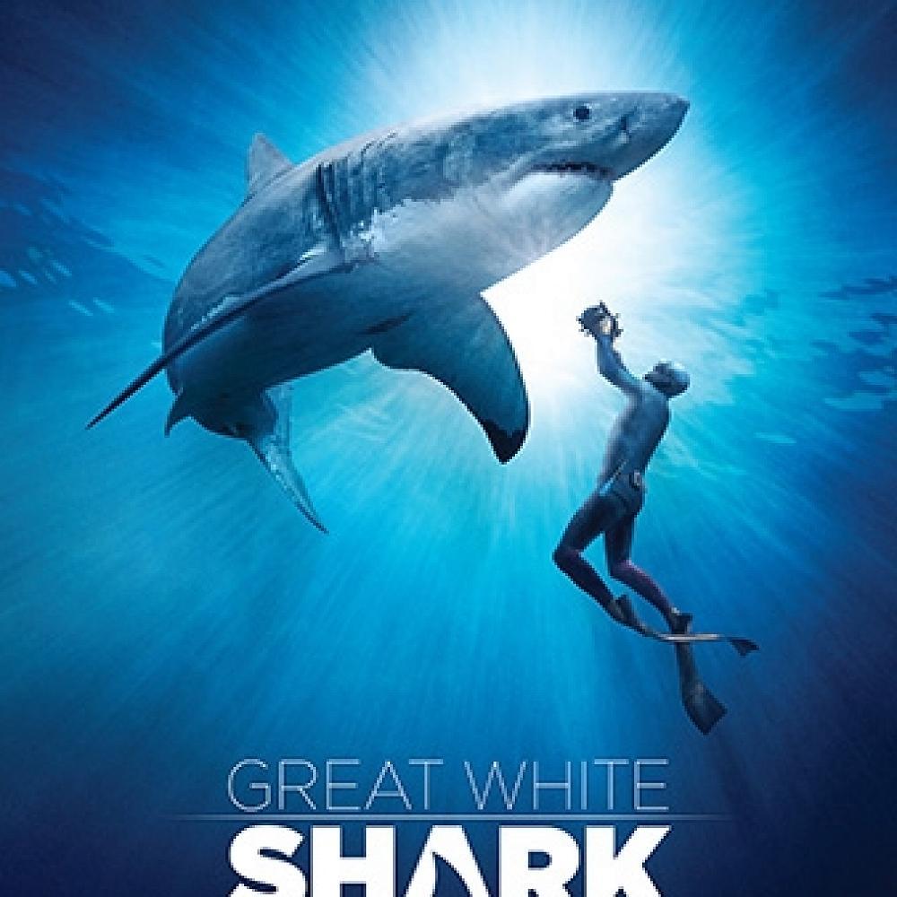 Great White Shark - 2018 Wild Dunedin Film Festival