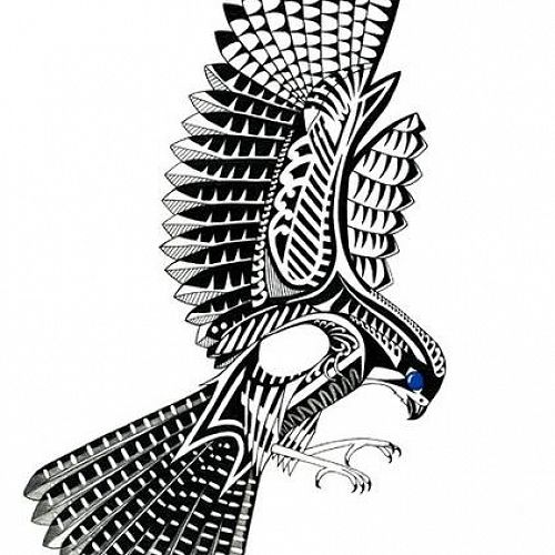 Te Pōkai Kārearea