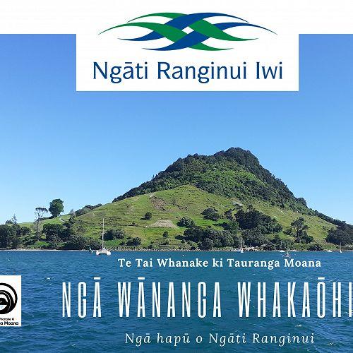 Ngā wānanga whakaōhia