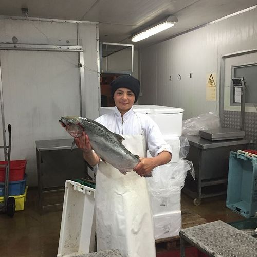 JB Lowery on work experience at Blue Water Fish