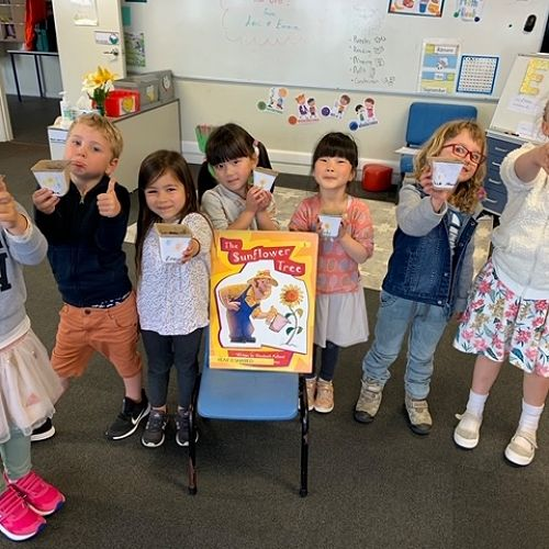 Seven of our tiny tots from Rūma Kowhai