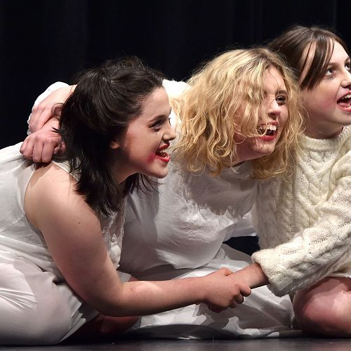 Otago Shakespeare Festival