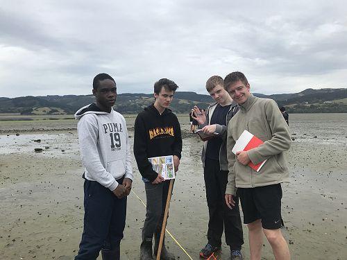 Year 12 Biology trip to Blueskin Bay