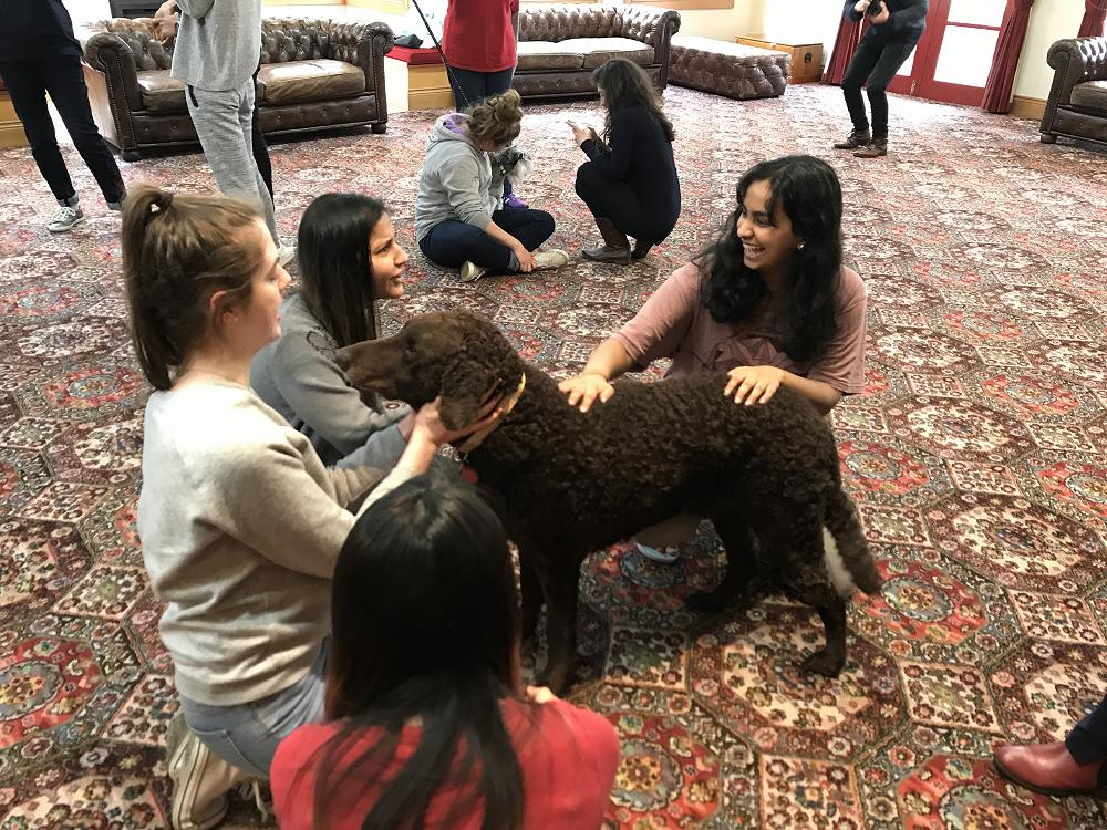 Otago SPCA dog squad visits the College