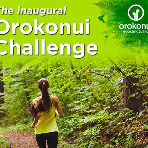 Inaugural Orokonui Challenge on International Earth Day, 22 April 2017