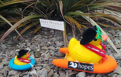 Hope and Sons Duck