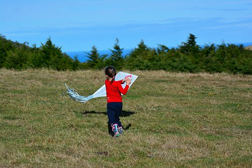 Running for lift off of her penguin kite at Wild Dunedin's 2016 kite flying event